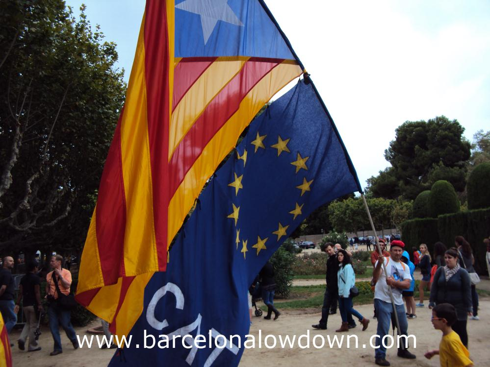 A man waving a giant Catalan indepedence flag in the Ciutadella Park during Catalonias National day (La Diada de Catalunya)